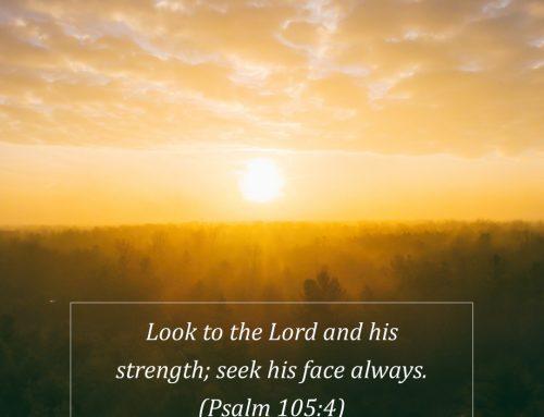 Lent Day 43